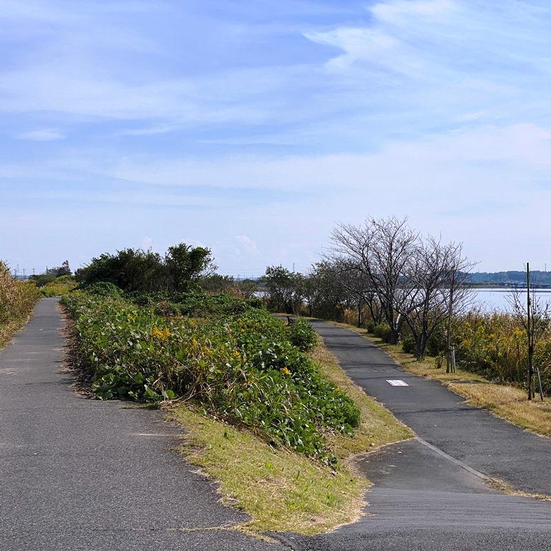 手賀沼遊歩道