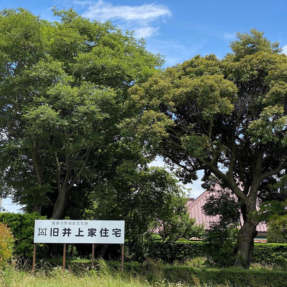ふれあいラインからの旧井上家住宅