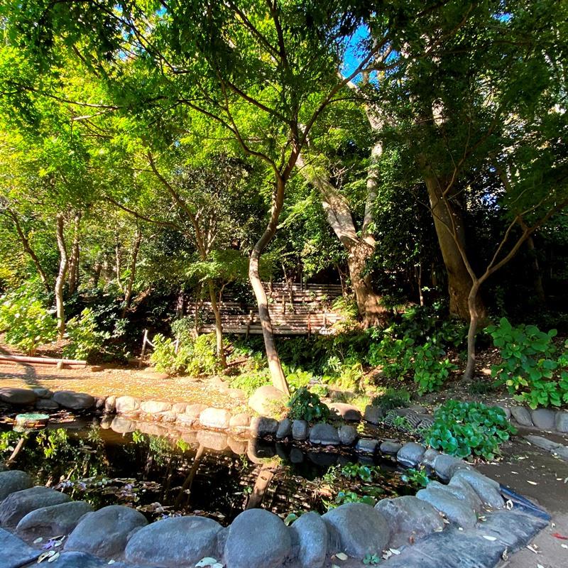 旧村川別荘の池