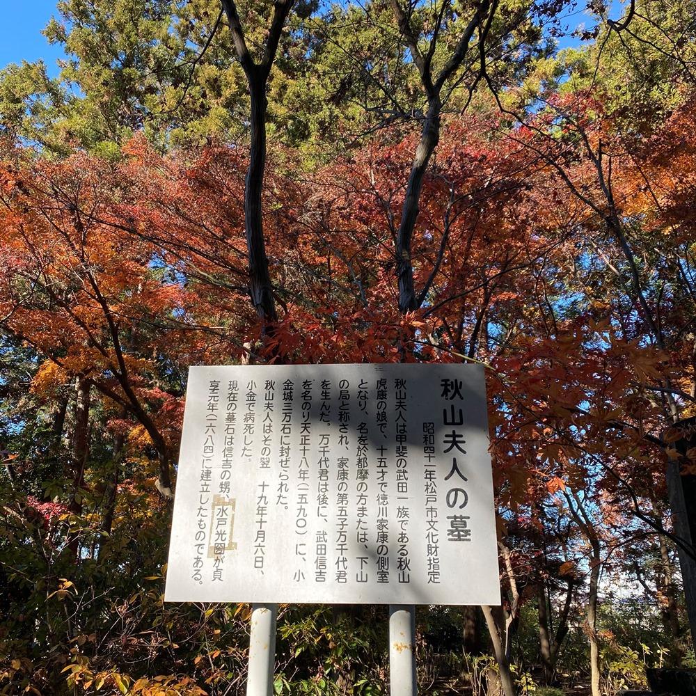 秋山夫人の墓解説パネル