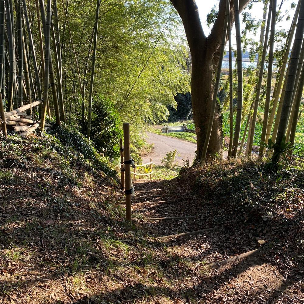 竹林の階段を下るとハケの道に出る