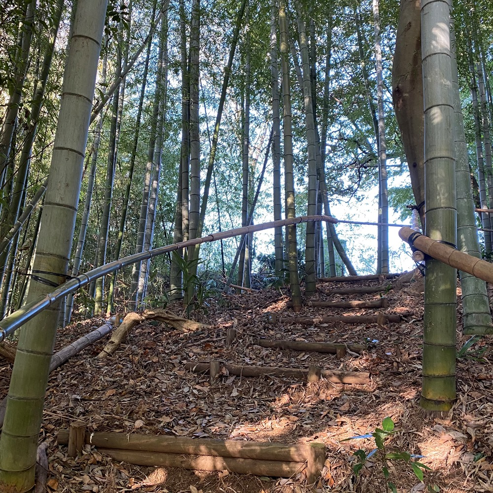 竹の手すりがある階段