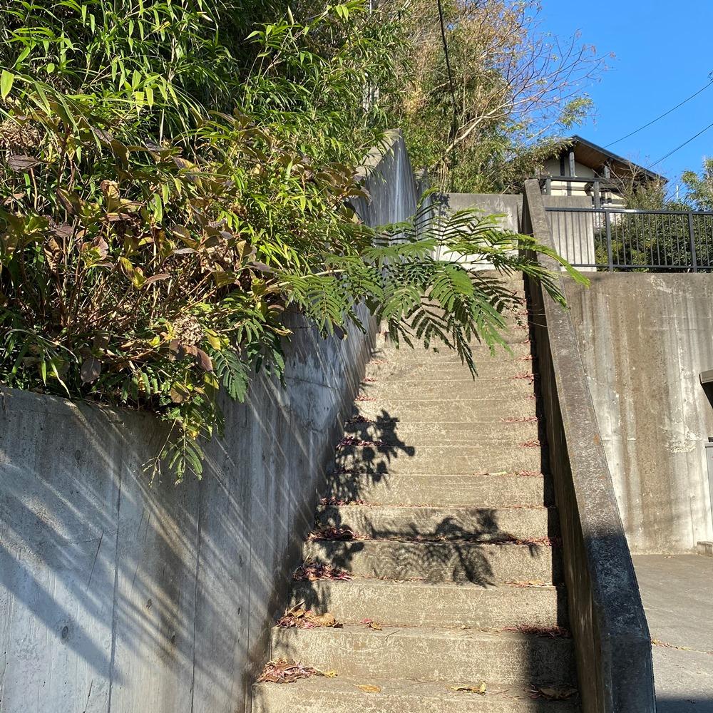 島久別荘跡への階段