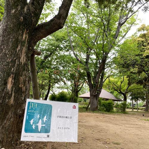我孫子アートな散歩市 - G1 - かとうかづみ - 手賀沼の風と音