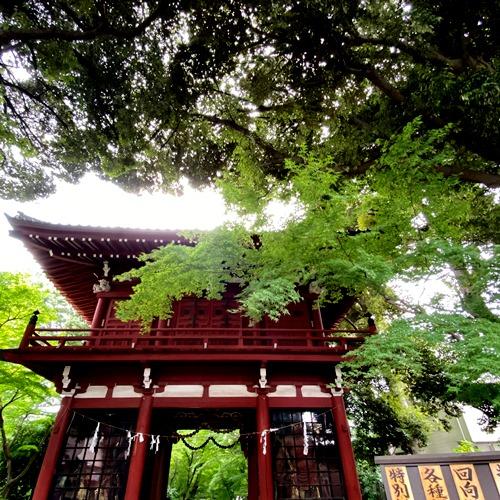 本土寺仁王門